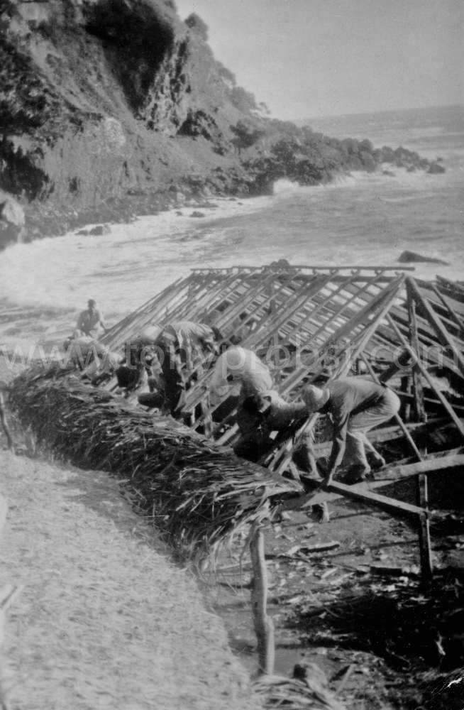 1953 Thatching roof on Longboat house