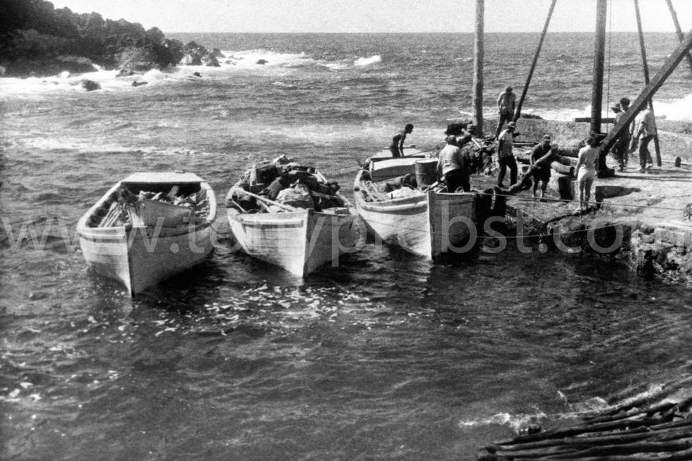 1967 Returning from Henderson with Miro wood.  First motor put in a long boat was in 1953