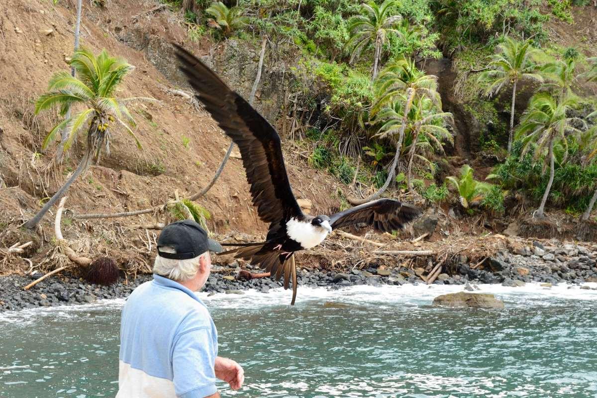 Dave Christian and a Frigate Bird