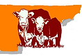 ETPHA+color+cow+logo.png
