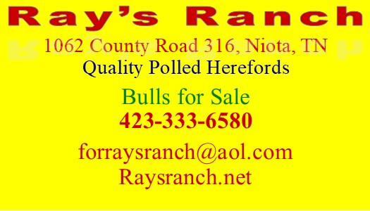 Rays ranch banner.pub.jpg