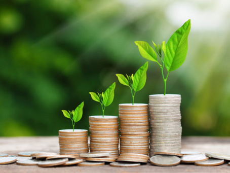 How to understand your cash flow and potential to invest?