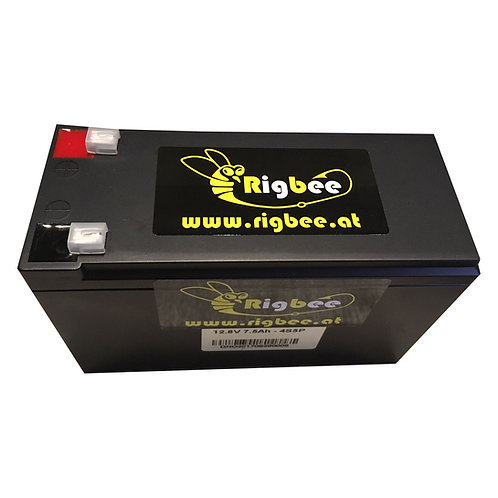 RigBee Lithium MaxBeePower LiFepo4 Akku 12V 7,5Ah + Ladegerät