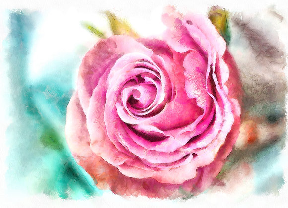 Winter Rose Printable