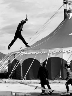 Pole national des arts du cirque