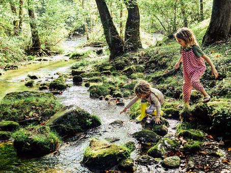 Mit der Family im Wald & All4Lunch im Gepäck