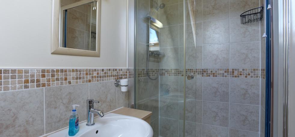 teasel-shower.jpg