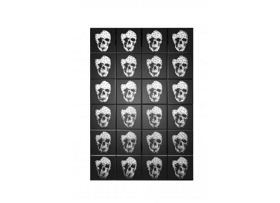 Mirrored Skull Print