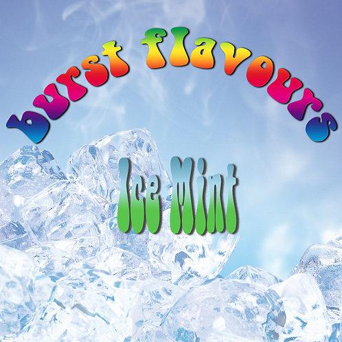 Burst Flavours - Ice Mint