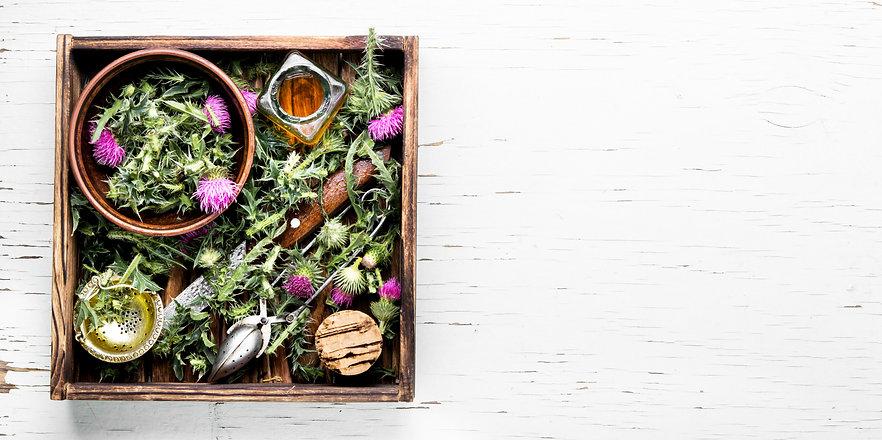 natural-herbs-medicine-MUGQ4CD.jpg