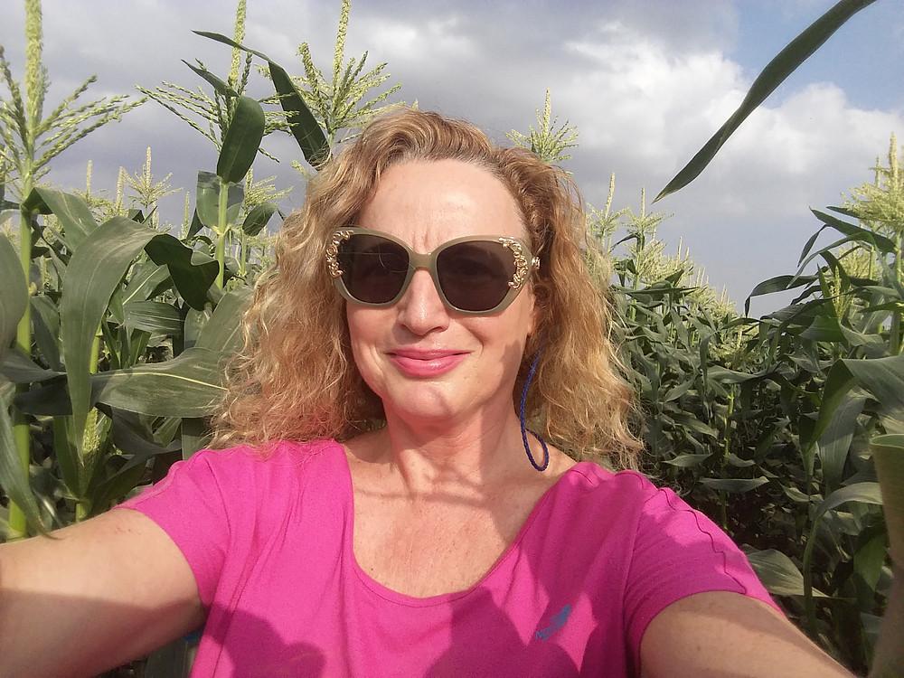 בשדות התירס-סלפי