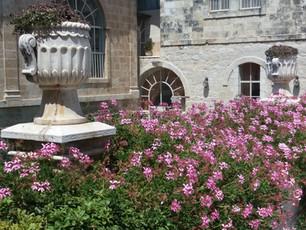 Jerusalem-American colony hotel