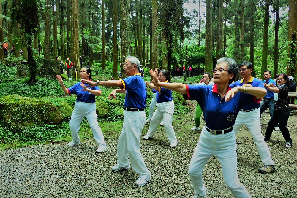 אמנויות לחימה בפארק קסיטו-צלמה גילי מצא