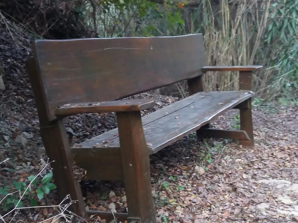 ספסל ממתין-צלמה גילי מצא