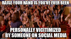 Raise your hand if you've ever been personally victimized by someone on social media