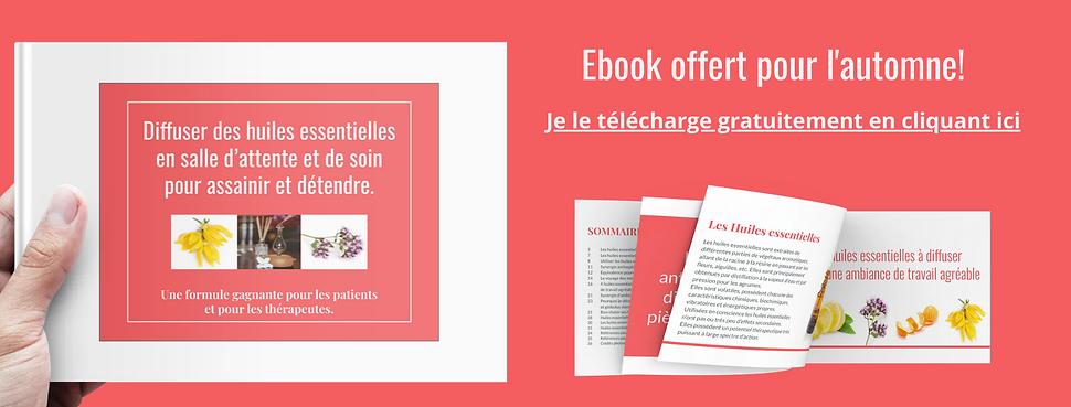 Ebook Free.2020.png