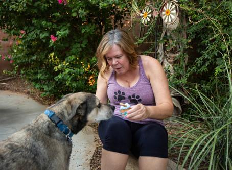 Chuke + Barbara - Senior Dog Session