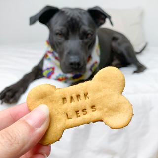 Dogs Eating Cake