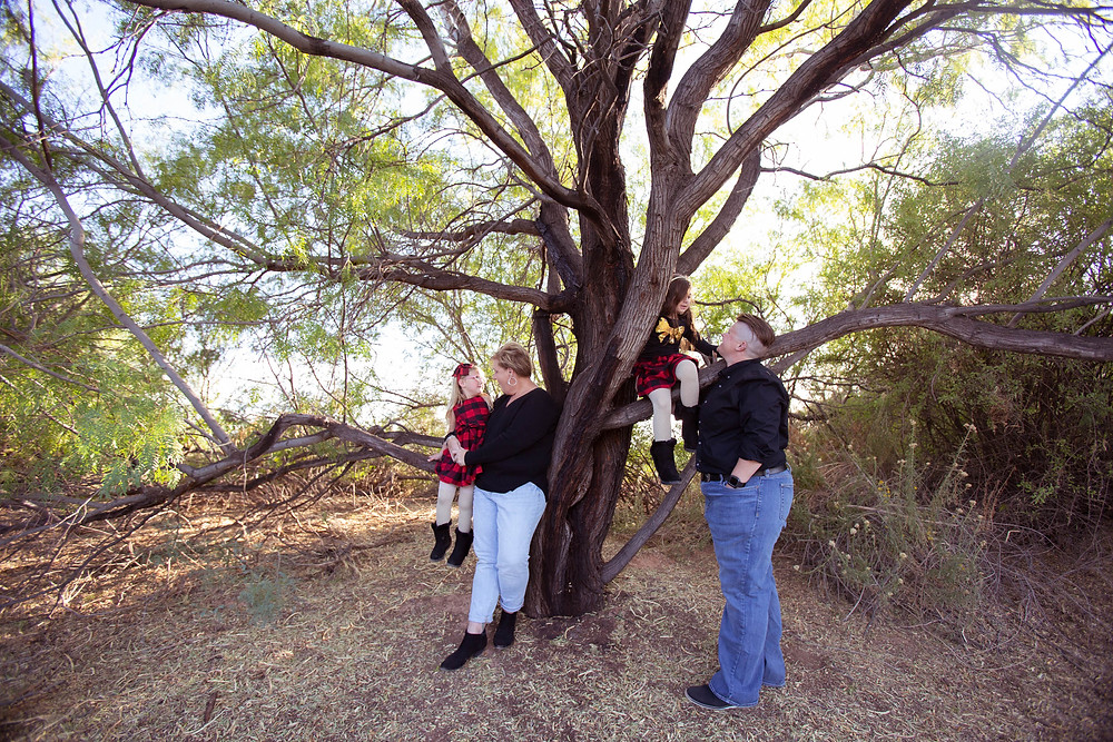 family photo in tree