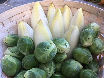 groente 15.jpeg