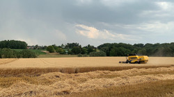 landbouw 1