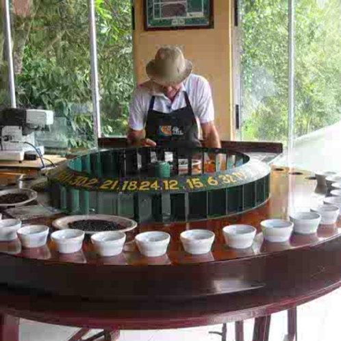 Diriá Coffee Tour - 10% de descuento en el Tour de Café