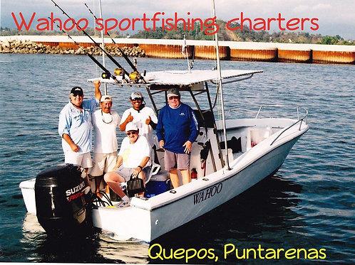 Wahoo Sportfishing: 10% de descuento en Tour de Pesca