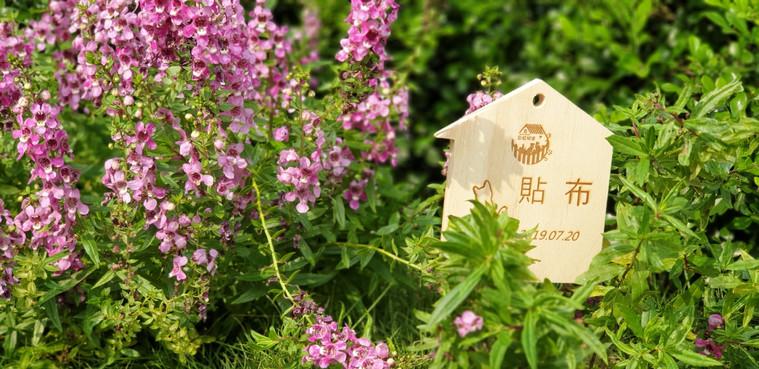 20201014貼布花葬儀式_201014_47.jpg