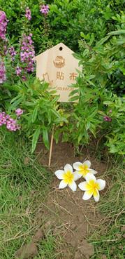 20201014貼布花葬儀式_201014_44.jpg