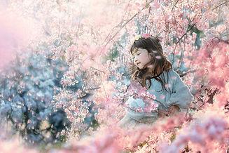 みーちゃん桜1.jpg