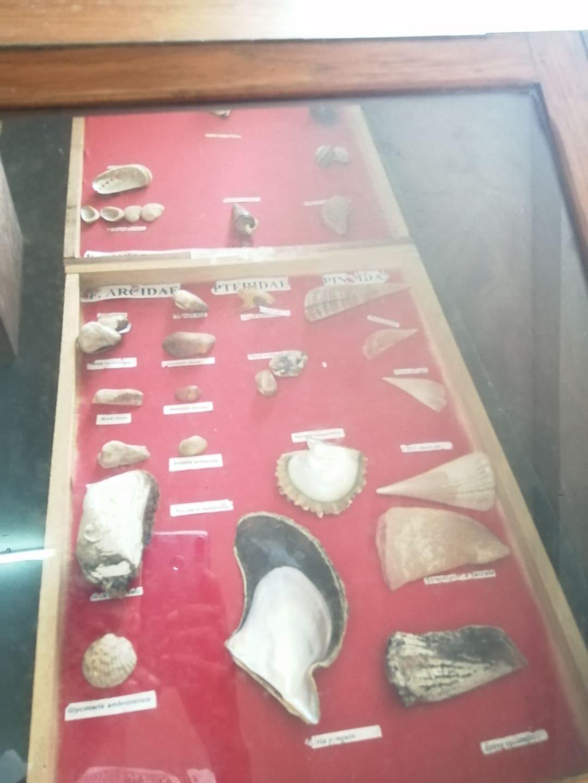 Visite du musée du CNRO