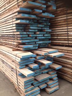 EICHE unbesäumt: Eichenholz kaufen