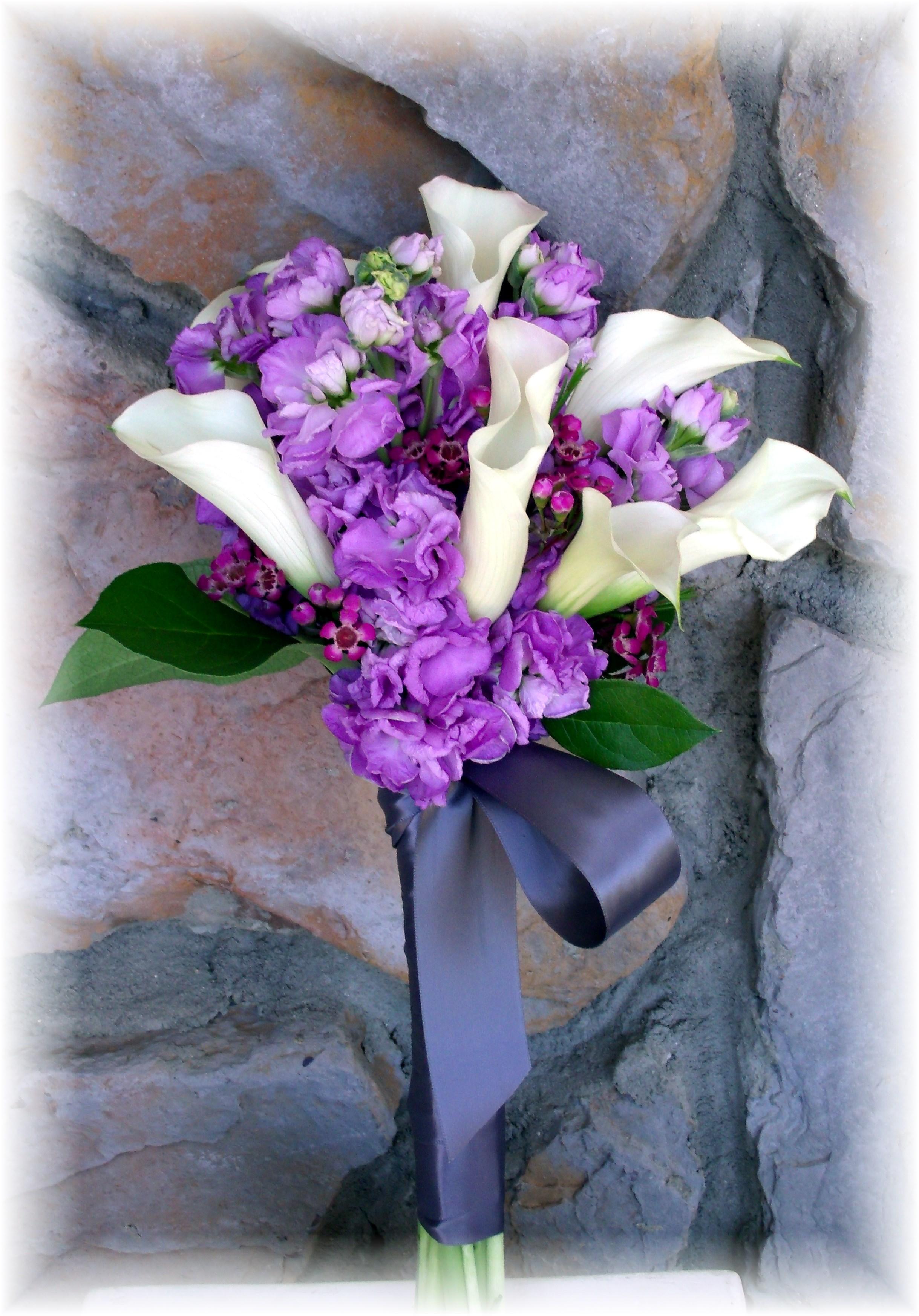 Calla lilies & stock