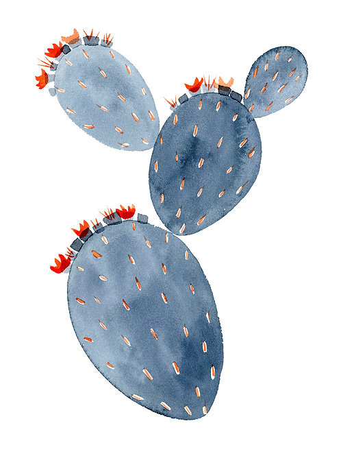 Grey Prickly Pear Greeting Card