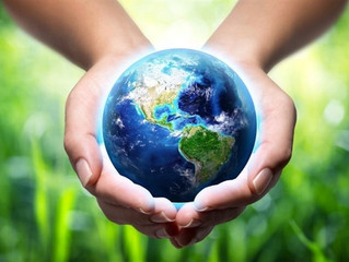VN Sisters call for action on caring for the Earth