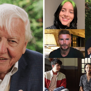 Sir David Attenborough Answers Questions From Famous Fans