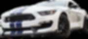 Concorso Detailing of Texas, Ford GT350, Jim Mango, Garages of Texas
