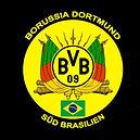 Logo Borussia Dortmund Rio Grande do Sul