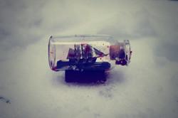 Winter mind.
