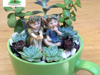 The Magic Fairy Tree - Teacup Fairy Gardens