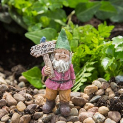 Buddy the Flower Power Gnome