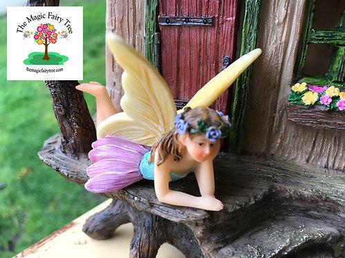 Fairy Jasmine