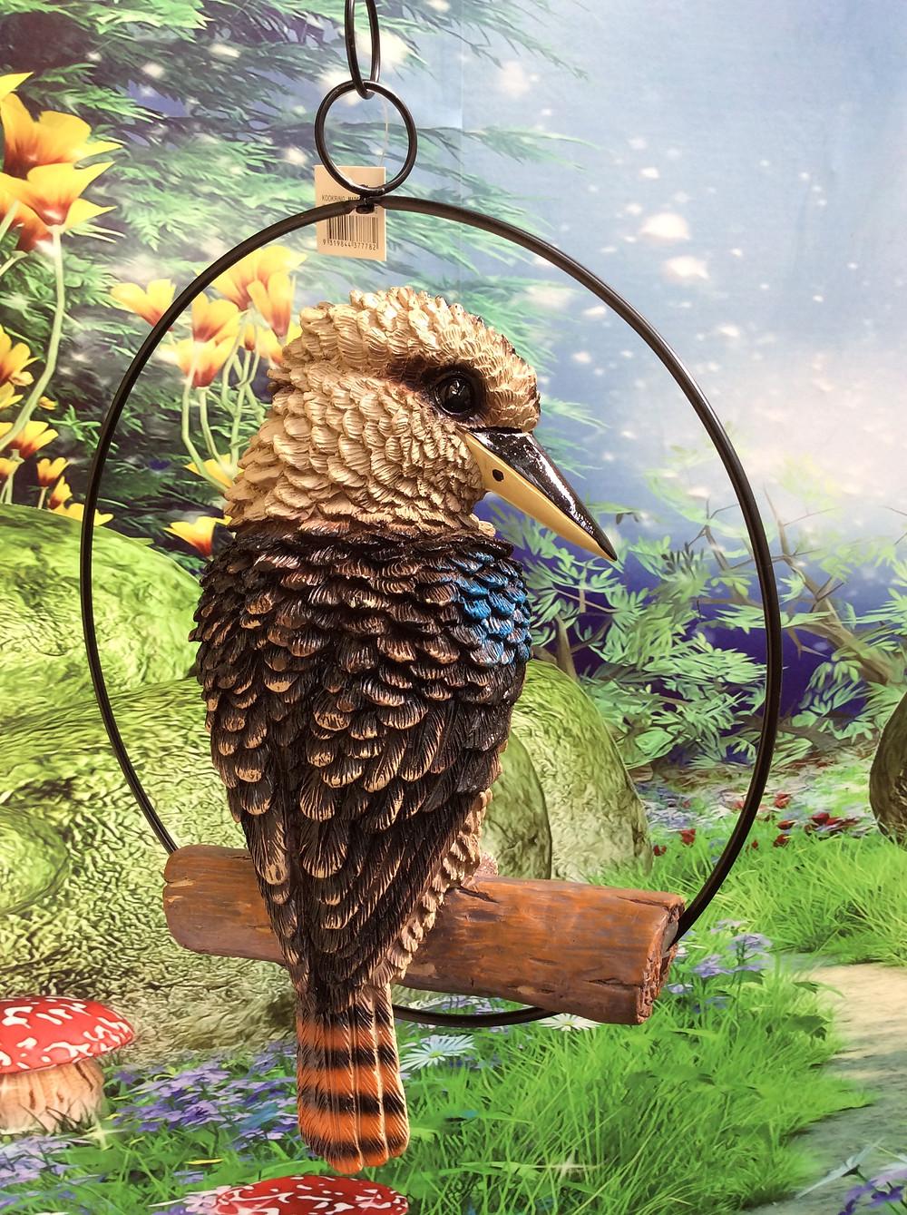 kookaburra in a ring