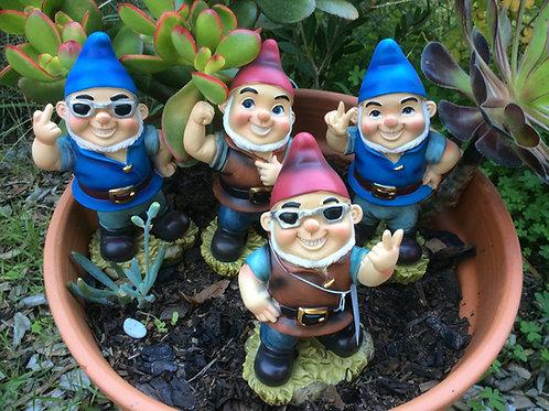 Naughty Gnomes