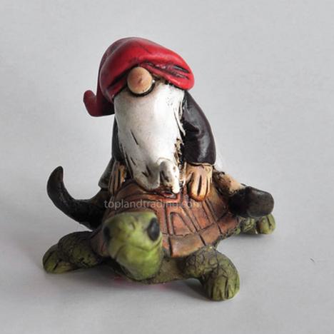 Garden gnome riding a turtle