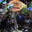 Thumbnail: Fairy garden sign - Fairy leaf
