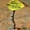 Thumbnail: Fairies Welcome - fairy garden sign