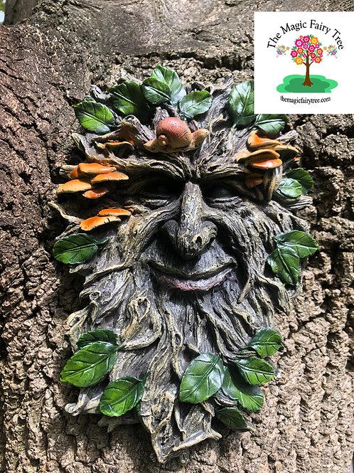 28cm Treant Green Man Tree Face Plaque