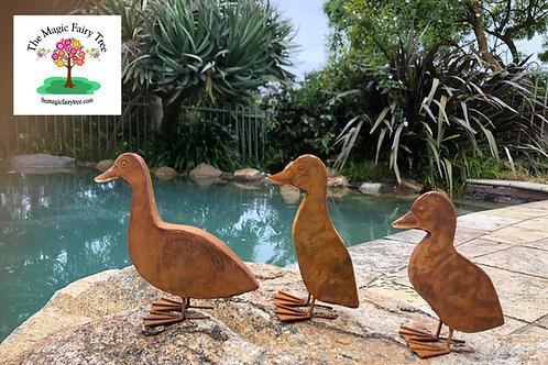 Rusty Metal Ducklings