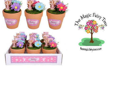 12cm Fairy Wishes Mini Garden Pot